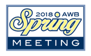 springmeeting2018rgblogo m